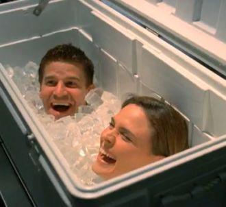 David Boreanaz et Emily Deschanel dans 'Bones'
