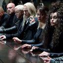 """"""" Harry Potter et les Reliques de la Mort (Partie 1)"""""""
