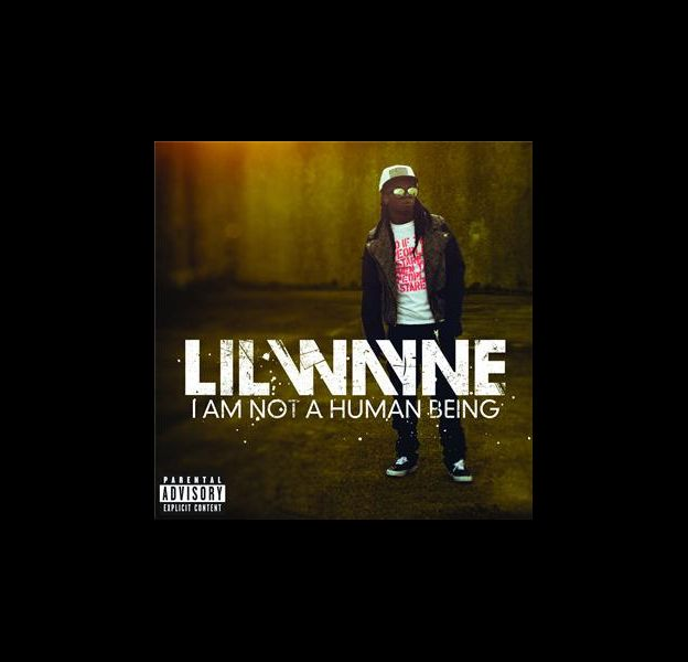 Pochette : I Am Not A Human Being