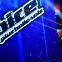 The Voice 1x09 : Lise Darly, Sonia Lacen, Vigon et Blandine Aggery éliminés !