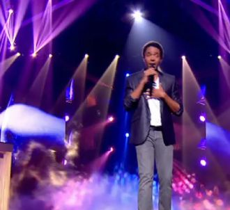 Stéphan Rizon chante 'With A Little Help From My Friends'