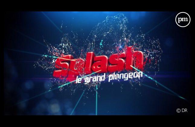 """Suivez et commentez """"Splash ! Le grand plongeon"""" en direct sur puremedias.com"""