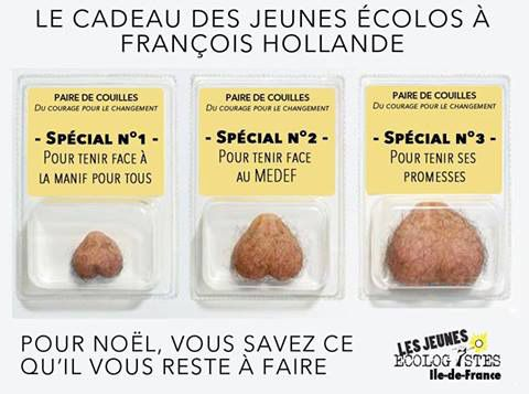 Pub : Le cadeau des Jeunes écolos à François Hollande