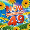 "10. Compilation - ""Now 49''"