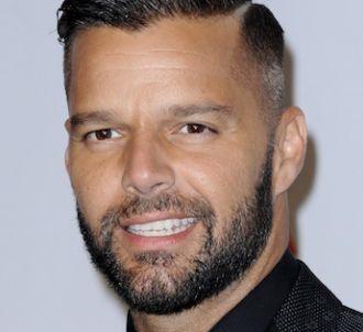 Ricky Martin aurait pu être juré dans 'Rising Star' !