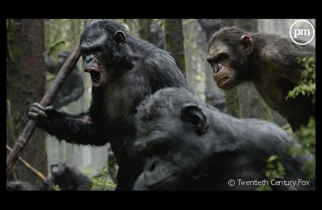 """""""La Planète des singes : l'affrontement"""" 3e meilleur démarrage 2014"""