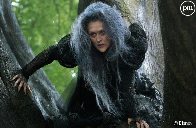 "Meryl Streep dans ""Into the Woods"""