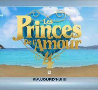 'Les Princes de l'amour' à 18h50 sur W9