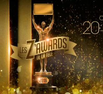 'Les Z'Awards' ce soir sur TF1