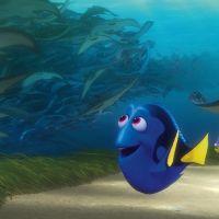 Pixar dévoile tous les clins d'oeil de ses films