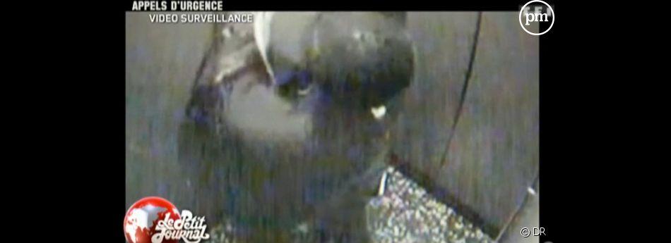 Une vidéo datant de 2005 a été diffusée dans Appels d'Urgence.