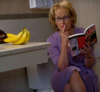 <p>Meryl Streep à l'affiche de 'Tous les espoirs sont...