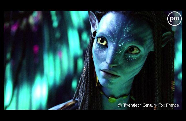 """Les scripts d'""""Avatar"""" seront terminés dans six semaines"""