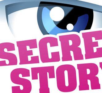 Le retour de 'Secret Story' est quasiment acquis