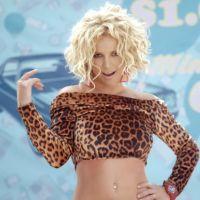 Disques : Cabrel devance Louane, Britney Spears déçoit, Maître Gims impressionnant