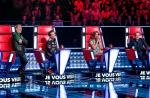 "Shine France va perdre ""The Voice"""
