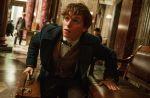 """Box-office US : """"Les Animaux fantastiques"""" moins puissant que """"Harry Potter"""""""
