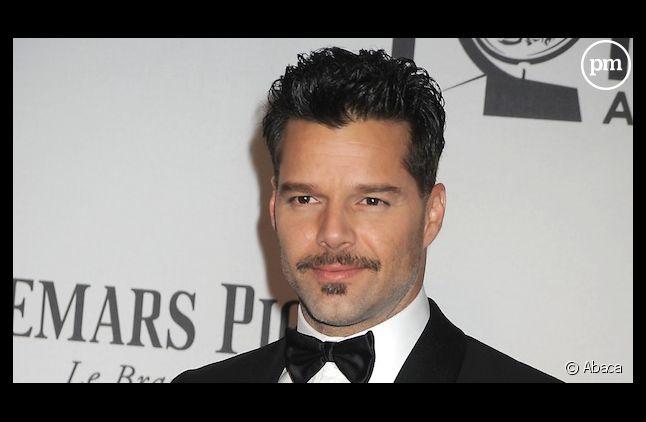 Ricky Martin aura sa propre série télévisée dans laquelle il tiendra le rôle principal