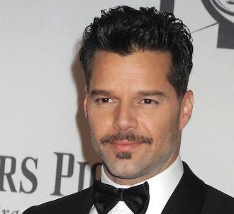 Ricky Martin aura sa propre série télévisée dans laquelle...