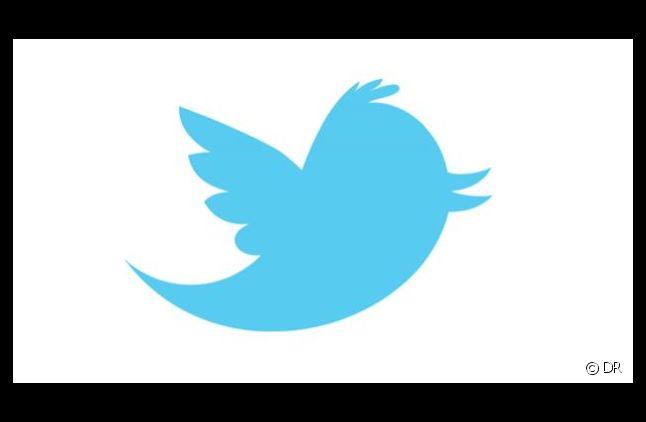 200 millions de personnes utilisent le réseau social Twitter.