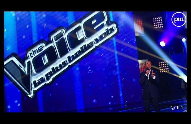 """Nikos Aliagas, présente """"The Voice"""""""