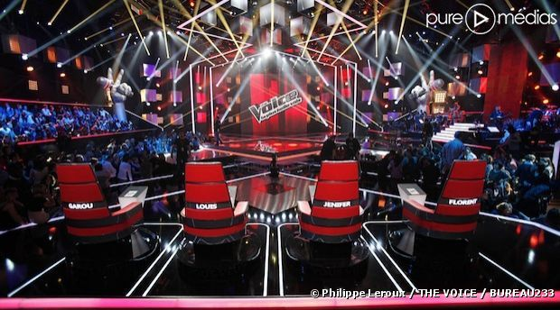 """De nombreuses personnalités déjà connues du public ont tenté leur chance dans la saison 2 de """"The Voice"""""""