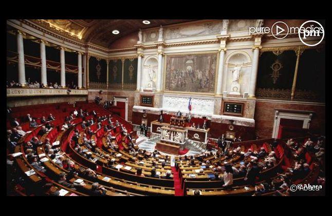 Public Sénat dévoile son dispositif pour la suite du débat autour du mariage pour tous.