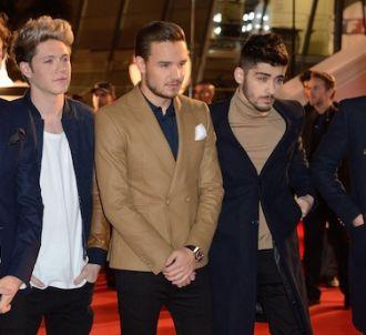 Un projet de télévision autour de One Direction