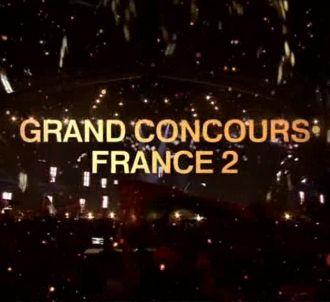 France 2 lance un concours pour trouver le représentant...
