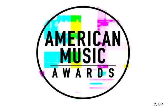 """Les """"American Music Awards"""" le 6 décembre sur TMC"""