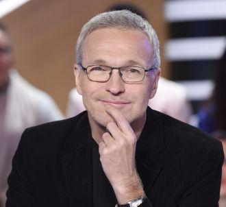 Laurent Ruquier anime 'Les Enfants de la télé' chaque...