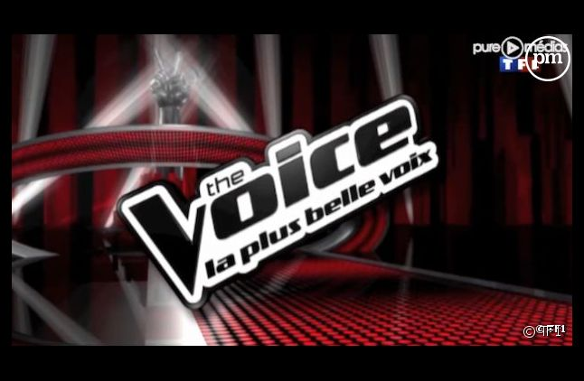 """The Voice, la plus belle voix"""