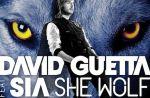 """David Guetta refait équipe avec Sia pour """"She Wolf (Falling To Pieces)"""""""