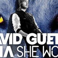 David Guetta refait équipe avec Sia pour