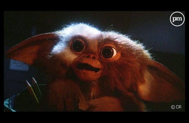 """Un nouveau film des """"Gremlins"""" serait en négociation"""