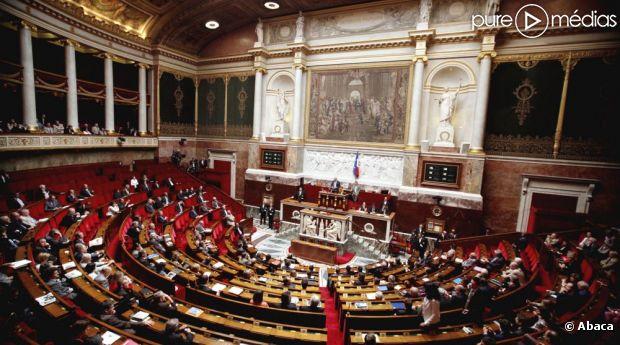 Enfin ! La chaîne LCP se décide à retransmettre les débats de l'Assemblée nationale sur le mariage pour tous.