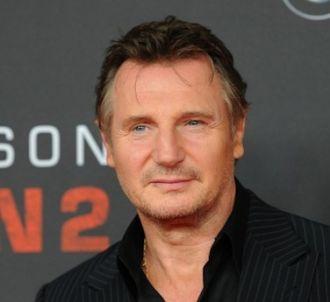 Liam Neeson va jouer dans le remake de 'Les Lyonnais'.