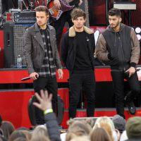 Charts UK : One Direction pulvérise le record de Daft Punk