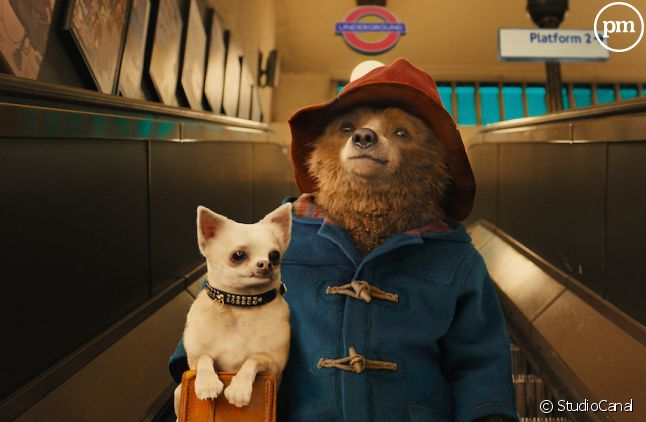 """Paddington"" démarre en tête du box-office"