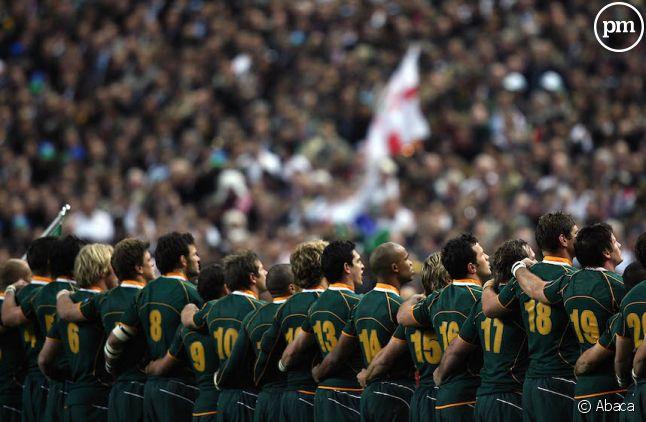 L'Afrique du sud a battu sur le fil le Pays de Galles (23-19)