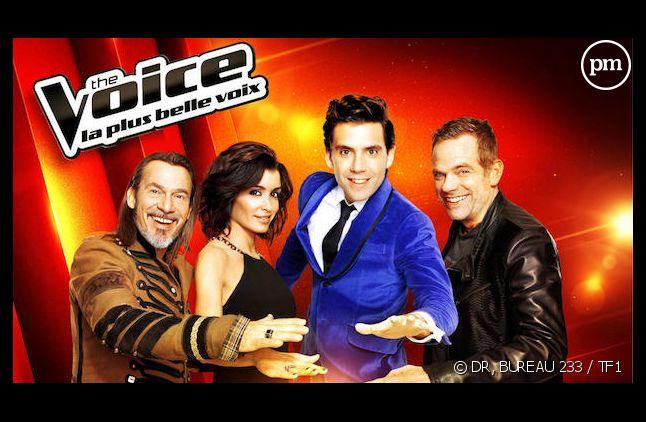 """Que sont devenus les talents des deux premières saisons de """"The Voice"""" ?"""