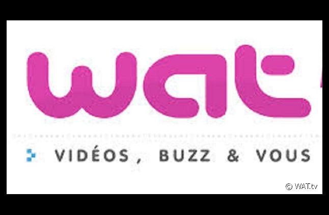 La plate-forme vidéo du groupe TF1 WAT.tv est indisponible