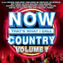 """10. Compilation - """"Now That's What I Call Country: Volume 7"""""""