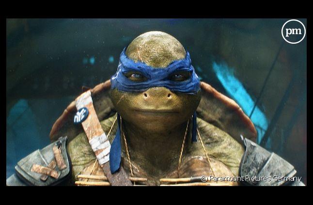 """""""Ninja Turtles"""""""