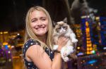 La propriétaire de Grumpy Cat est devenue multi-millionnaire