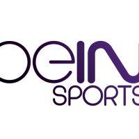 beIN Sports a perdu plus d'un milliard d'euros depuis son lancement en 2012