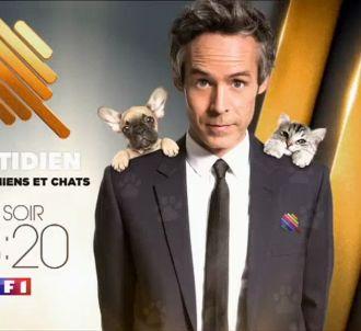 'Quotidien : spéciale chiens et chats' à 23h20 sur TF1
