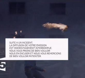 Un bug coupe la diffusion de 'C à vous' sur France 5.