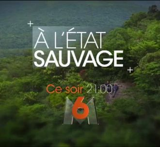 'A l'état sauvage' ce soir sur M6