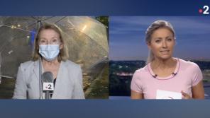 """""""Mais j'ai pas le retour, moi !"""" : Duplex compliqué pour une journaliste au """"20 Heures"""" de France 2"""